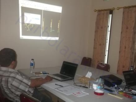Professional Course SAP2000