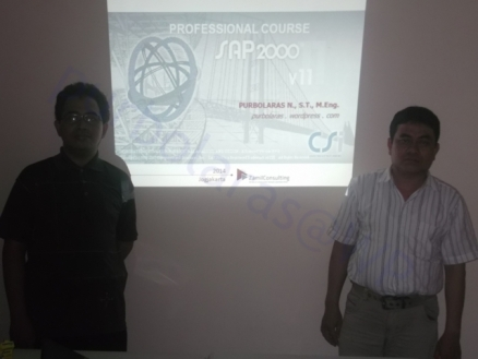 Professional Course SAP2000